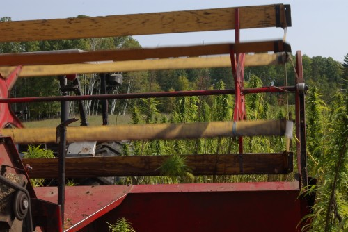 A view from behind the combine
