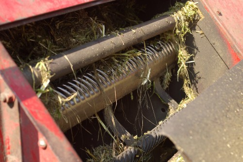 The cylinder of the combine, freshly freed from tangled hemp stalks.