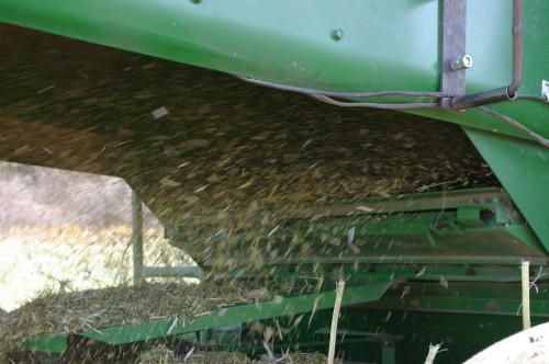 The chaff coming out the rear of the combine.