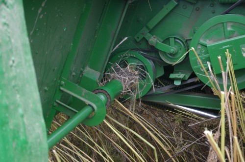 Dried male hemp plant stalks will wrap around any exposed moving shaft, axle, pulley, chain, or belt.
