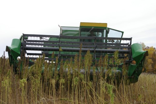 A view of the approaching combine.